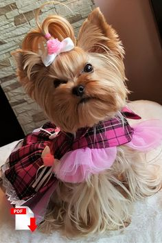 How to make fancy dog dress for small dogs. #smalldogfashion #dogdress #sewingpattern #dogclothes #yorkieclothes #yorkielife Girl Dog Clothes, Yorkie Clothes, Small Dog Clothes, Pekinese, Dog Clothes Patterns, Dog Pattern, White Bows, White Lace, Girl And Dog