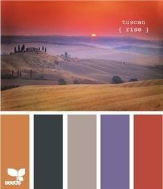 Tuscan Color Palette | Here is the pretty color scheme.