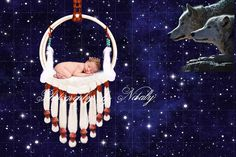 Newborn digital backdrop | Photo props | Newborn background | Night sky baby wolf img 4040 by GraphicsSt on Etsy
