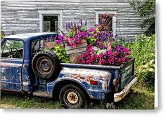 Truck Load Of Flowers Greeting Card by Wayne Stabnaw