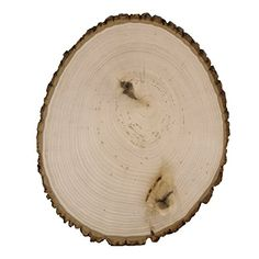 Walnut Hollow Large Rustic Basswood Country Round Bulk Value Pack for Home Decor  Rustic Weddings *** Read more reviews of the product by visiting the link on the image.Note:It is affiliate link to Amazon.