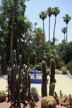 Jardin majorelle Marrakech - Maroc - www.jardinmajorelle.com