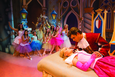 Image result for holiday panto