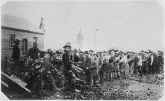 File:Metlakahtla pioneers clearing the forest and uprooting stumps to prepare the site of the Metlakahtla, Alaska settlement. - NARA - 29802...