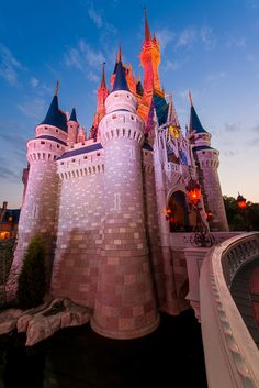 cinderella-castle-portrait-dawn