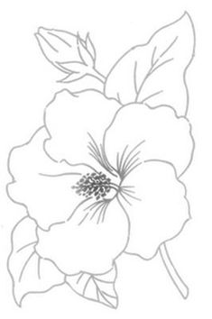 Coloring Pages - basteln & co - Diy Embroidery Flowers, Hand Embroidery Patterns Free, Mexican Embroidery, Vintage Embroidery, Embroidery Sampler, Flower Art, Coloring Pages, Drawings, Crocheted Flowers