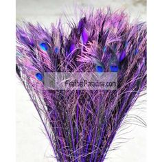 "Dyed Purple Peacock Eye Feathers 40-45"" 12 Pieces Wholesale dozens or bulkswedding Centerpieces Crafts arts DIY Events and Stage Performance Decorations"