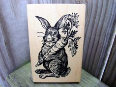 PSX Rabbit Hare Bunny Carrot Garden by cookingpinkpanther on Etsy