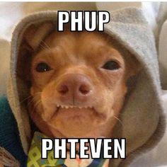 phteven | phteven