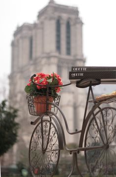 Bicycle with Odette Cream Puffs and flowers in front of Notre Dame, Paris