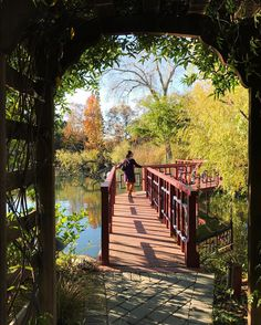 [PHOTOS] Picturesque Fall Hikes in New Jersey: Chasing Autumn Hues — get there | get lost