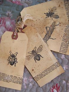 Handmade Insect Gift Tags Vintage Natural Science  Gift by QueenBe, $6.00