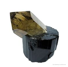 SOREG14A-12 Smoky Quartz on Schorl Linopolis, Doce valley, Minas Gerais, Southeast Region, Brazil Art Soregaroli Small Cabinet, 6.9 x 6.8 x 5 cm Sharp, quite attractive combination piece featuring a single Smoky Quartz crystal emanating from a single Schorl. The Smoky Quartz, gemmy and lustrous, is pristine and 6.3 cm long. The Schorl has excellent luster and an intriguing termination with very fine hexagonal and circular ripple patterns. Naturally, it is contacted on the bottom. Both…