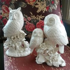 Hey, I found this really awesome Etsy listing at https://www.etsy.com/listing/219430550/vintage-owls-fun-home-decor