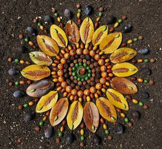 Mandala (Sanskrit: मण्डल Maṇḍala, 'circle') is a spiritual and ritual symbol in Hinduism and Buddhism, representing the Universe. Land Art, Mandala Nature, Ephemeral Art, Organic Art, Art Sculpture, Crystal Grid, Nature Crafts, Art Nature, Circle Of Life