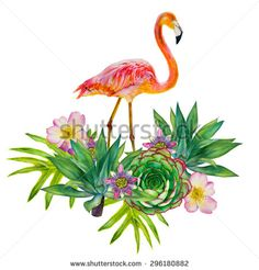 Pink flamingo with exotic tropical plants isolated on a white background. Floral composition. Hand-drawn watercolor picture. Roses, yucca palms, leaves, passionflower, succulent - stock photo