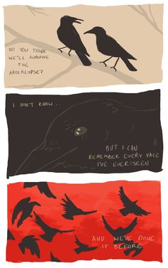A crow that remembers a face before the apocalypse. How she fed him when he's found no food and was starved. Now she stood, about to be overtaken by the thrill of the storm, and it saves her. Because a crow will never forget a face. Demian Hermann Hesse, Arte Dark Souls, Vent Art, Crows Ravens, My Demons, Fanarts Anime, Dark Art, Art Inspo, Art Reference