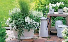 Hier macht schon das Pflanzen gute Laune: In der großen Emaillewanne wiegt das aufrecht wachsende Federgras (Stipa tenuifolia) sanft im…