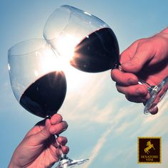 Let's have a toast! #cheers #senatorevini #wine
