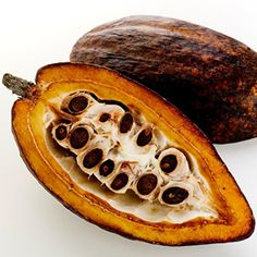 This is where the precious Criollo bean that makes Mayan Ceremonial Cacao come from