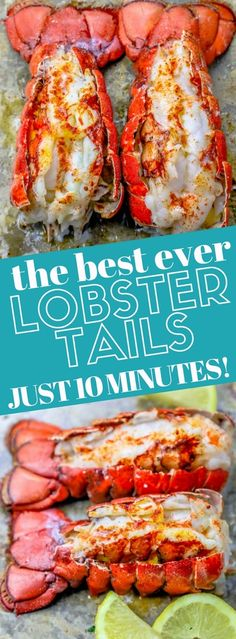 Lobster Tail Oven, Easy Lobster Tail Recipe, Baked Lobster Tails, Broiled Lobster Tails Recipe, Grilled Lobster, Cooking Lobster Tails, Lobster Recipes, Fish Recipes, Seafood Recipes