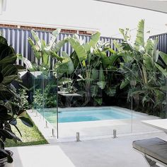 One of my faves (OK, they're all my faves) but I am a sucker for white concrete & Giant Bird of Paradise. Backyard Pool Landscaping, Backyard Pool Designs, Small Backyard Pools, Backyard Garden Design, Swimming Pools Backyard, Tropical Landscaping, Swimming Pool Designs, Garden Pool, Landscaping Blocks