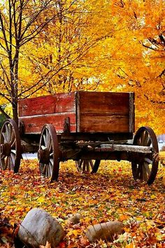 Antique Wagon and autumn colora. I would live to live somewhere where I can experience fall colors and have a wagon like this as backdrop for family portraits Old Wagons, Autumn Scenes, Seasons Of The Year, Fall Pictures, Fall Photos, Mellow Yellow, Country Life, Country Fall, Country Living