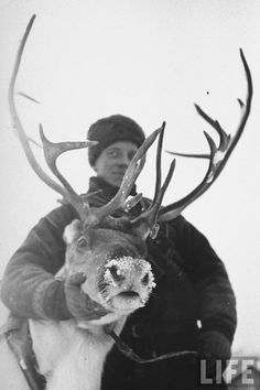 Finnish soldier and reindeer during the Winter War (Talvisota)