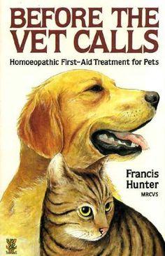Trattamento omeopatico pronto soccorso per animali