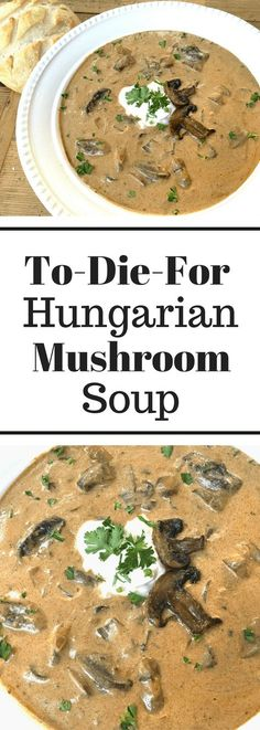 To-Die-For Rustic Hungarian Soup. I was generous with the lemon & sour cream and used 3 different kinds of mushrooms! To-Die-For Rustic Hungarian Soup. I was generous with the lemon & sour cream and used 3 different kinds of mushrooms! Healthy Recipes, Vegetarian Recipes, Cooking Recipes, Tofu Recipes, Hungarian Mushroom Soup, Hungarian Paprika, Mushroom Soup Recipes, Best Mushroom Soup, Recipe Cream Of Mushroom Soup