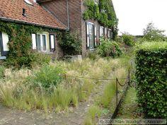 Piet Oudolf / Front Garden