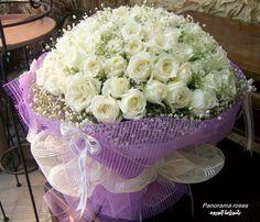 http://www.facebook.com/Panorama.roses