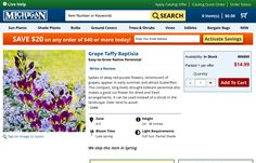 http://www.michiganbulb.com/product/grape-taffy-baptisia-66869