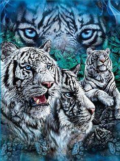 White Tigers Blue Super Soft Fleece Throw Blanket 50x60 JPI