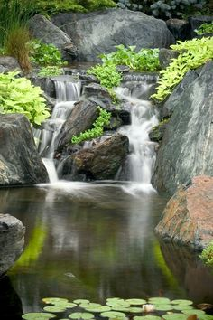 Aquatic Creations of Northern Virginia can build this in your backyard!