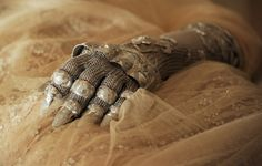 Lady-Like Gloves & Their History