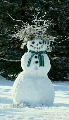 All natural hairdo adds interest to this snowman. - title Bad Hair Day - by Mike Kohlbauer