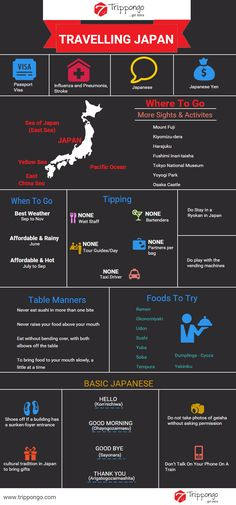 Get complete information about sightseeing and tourist destinations in Japan travelling infographic.