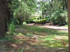 Vista da entrada da fazenda São Luiz - Cornélio Procópio - PR- BR