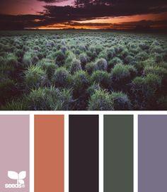 setting hues