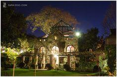 Shepstone Gardens at night