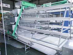 Livi Machinery - professional poultry farming equipment manufacturer, supply layer, broiler, baby chicken automatic battery cage system and other poultry equipment.