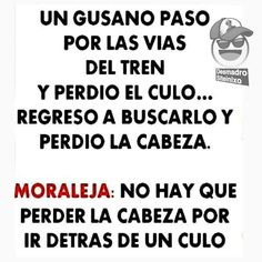 #Ley_de_la_vida