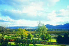 Hunter Valley Resort views