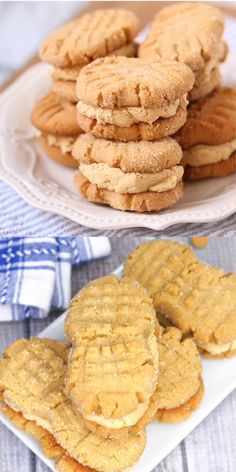 "Homemade Nutter Butter Recipe (with Video) Soft peanut butter cookies filled with luscious peanut butter cream — these Homemade Nutter Butter cookies might just be better than the ""real"" thing! - Even better than the real thing! Easy Cookie Recipes, Easy Desserts, Sweet Recipes, Delicious Desserts, Dessert Recipes, Yummy Food, Vegan Recipes, Homemade Desserts, Cookie Desserts"