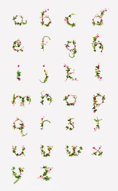 Lottie Loves... Floral Lettering