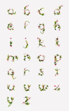 Lottie Loves...: Type >> Floral Lettering