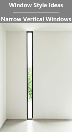Window Style Ideas - Narrow Vertical Windows