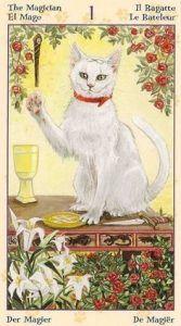 The Magician Tarot Card - Tarot of Pagan Cats Deck