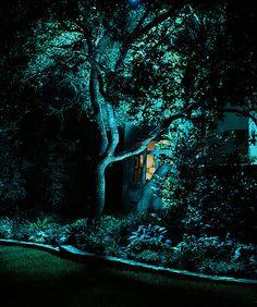 Lightscapes - Steve Aubrey  Austin, TX